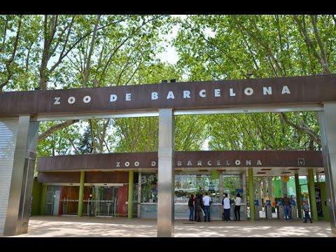 Barcelona Zoo, Spain