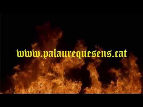 Espectacle Medieval al Palau Requesens