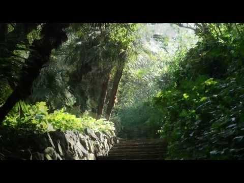 BARCELONA Jardí Botànic Històric