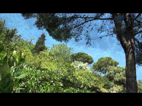 Jardins del Turó del Putget (Barcelona)