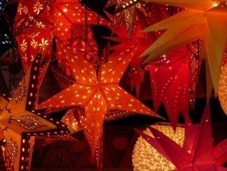 Weihnachtssterne auf dem Weihnachtsmarkt