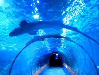 Barcelona Unterwasser Tunnel