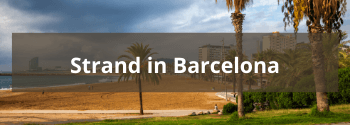 Strand-in-Barcelona-Hub