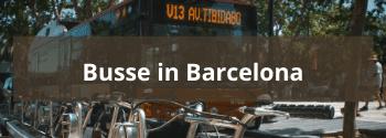 Busse in Barcelona - Hub