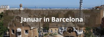 Januar in Barcelona - Hub