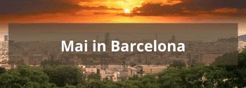 Mai in Barcelona - Hub