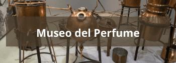 Museo del Perfume - Hub