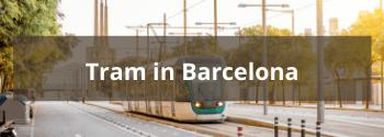 Tram in Barcelona - Hub