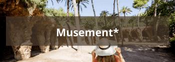 Musement-Hub